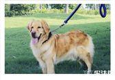 中型大型犬狗狗牽引繩遛狗繩項圈用品YDM14 魔法街