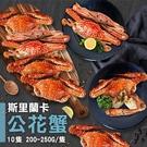【屏聚美食】斯里蘭卡公花蟹10隻(200-250g/隻)