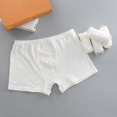 旅行純棉免洗非紙短褲成人全棉成人旅游8條