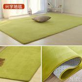珊瑚絨簡約現代臥室滿鋪可愛客廳茶幾墊沙發榻榻米床邊地毯可定制