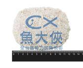 F3【魚大俠】BF032台灣裹粉里肌炸豬排(5片/700g/包)