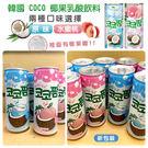 韓國 COCO 椰果乳酸飲料 水蜜桃/原味 240ml