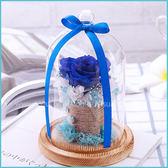 鮮花製成永生玫瑰不凋花(玻璃罩+木底座)-藍色邂逅 微景觀瓶 乾燥花 情人節禮物 生日禮物