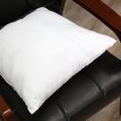 枕心500g(45*45)-生活工場