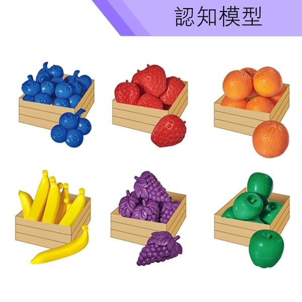 【USL遊思樂教具】認知模型-藍莓水果組 (36pcs) F1007E01