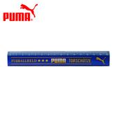 【日本正版】PUMA 直尺 15cm 日本製 塑膠尺 - 085925