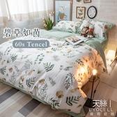天絲床組 碧草如茵 Q4雙人加大薄床包鋪棉兩用被四件組(60支) 100%天絲 棉床本舖