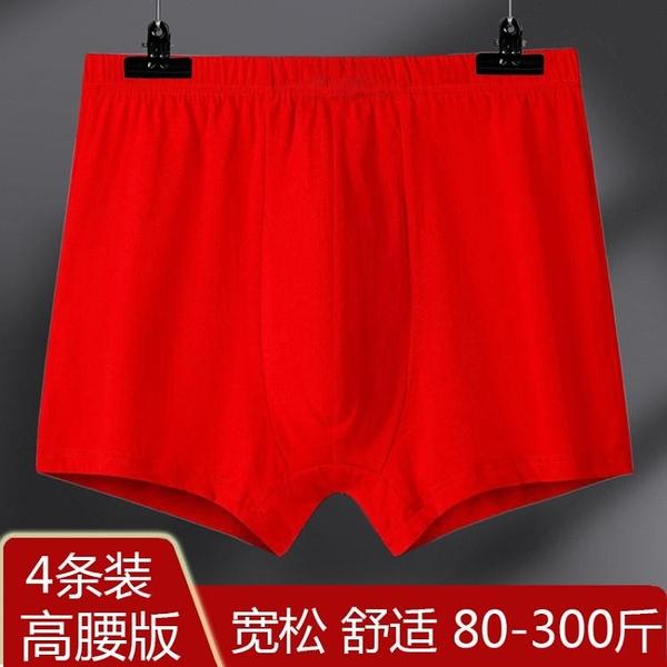 【促銷全場九五折】紅色純棉高腰男士內褲大紅本命年純棉平角褲頭全棉超大碼寬松褲衩