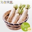 沁甜果園SSN.美濃白玉蘿蔔(5台斤/箱,共2箱)﹍愛食網