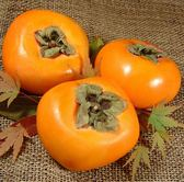 【果之蔬-全省免運】摩天嶺高山10A大顆甜柿X5斤±10%((每顆280g±10%)
