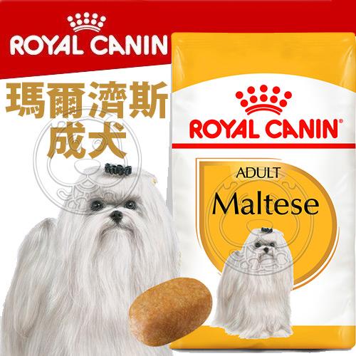 四個工作天出貨除了缺貨》BHN 法國新皇家飼料《瑪爾濟斯成犬MTA》1.5KG