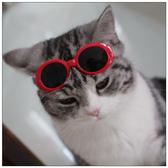 墨鏡貓咪眼鏡