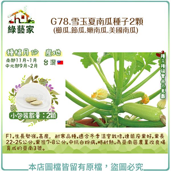 【綠藝家】G78.雪玉夏南瓜種子2顆(櫛瓜.節瓜.嫩南瓜.美國南瓜)