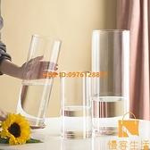 花瓶擺件客廳插花透明玻璃北歐富貴竹水竹鮮花直筒花瓶【慢客生活】