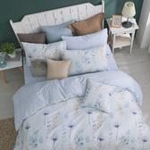 100%純棉 / 雙人 / 兩用被床包組-【沁藍微風】