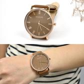 手錶 STACCATO玫金羅馬腕錶NEKS12