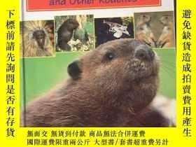 二手書博民逛書店World罕見Book s Animals of the World Beavers and Other Rode
