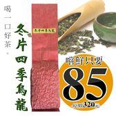 冬片四季烏龍茶  (100g裸包)  清香甘甜耐沖泡  軒典堂 臺灣烏龍茶