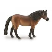 【永曄】collectA 柯雷塔A-英國高擬真動物模型-野生動物-埃克斯穆爾公馬