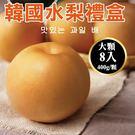 【果之蔬-全省免運】嚴選韓國大顆水梨禮盒X1盒(8顆/盒 每顆約400g±10%)