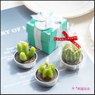 T盒裝 仙人掌蠟燭x1入(款式隨機出貨) 多肉 造型蠟燭 創意蠟燭 桌面擺飾 療癒小物 婚禮小物