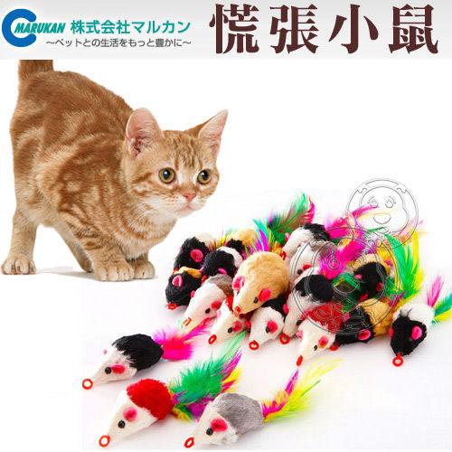 【培菓幸福寵物專營店】日本Marukan《慌張小鼠共1隻隨機出貨》逗貓小玩具 CT-241