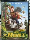 挖寶二手片-P22-030-正版DVD-動畫【大腳冒險王】-國英語發音(直購價)