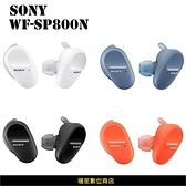 【周年慶】SONY WF-SP800N 運動防水真無線降噪 藍牙耳機 藍芽耳機 IPX55防水 (台灣公司貨)
