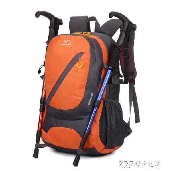 駱駝戶外徒步旅行短途旅行戶外雙肩包登山包男女旅行包登山包30L 探索先鋒