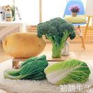 創意仿真搞笑3D食物蔬菜抱枕辦公室靠墊沙發飄窗房臥室靠枕WD 初語生活館