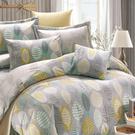 鴻宇 七件式雙人兩用被床罩組 瓦妮莎 美國棉授權品牌 台灣製2157