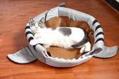 貓窩鯊魚窩房子別墅寵物小蒙古包睡袋狗窩冬季保暖封閉式貓咪用品   igo 瑪麗蘇