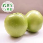 饗果樂.燕巢牛奶蜜棗約5台斤(16粒裝)﹍愛食網