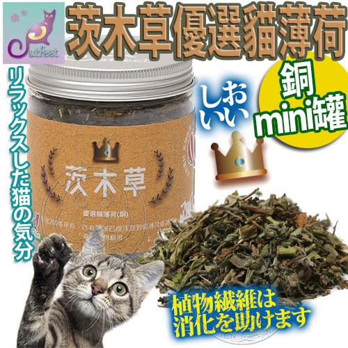 【培菓平價寵物網】CatFeet》茨木草優選貓薄荷貓草銅MINI罐-25ML