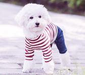 網紅小狗狗衣服女秋冬裝泰迪博美比熊小型幼犬寵物潮牌秋季四腳衣 依凡卡時尚
