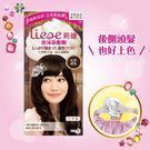 LIESE【莉婕】泡沫染髮劑 魅力彩染系...