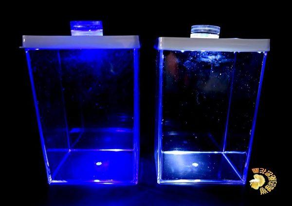 特製壓克力鬥魚缸.小魚缸 +藍白光LED燈 ☆水族器材.居家.店面.櫥窗.玄關.大廳擺飾☆