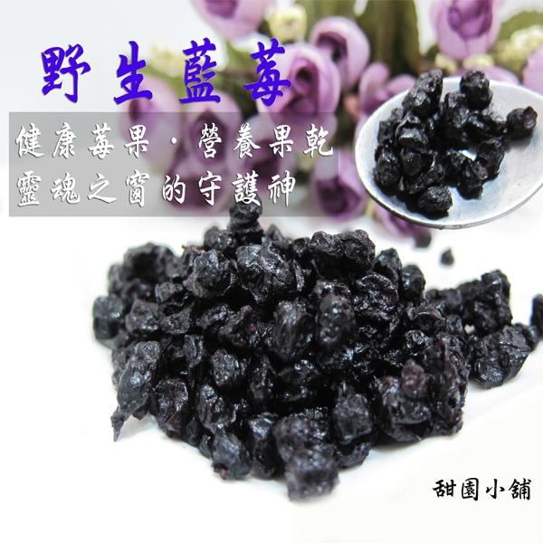 野生藍莓粒 隨身包 藍莓果粒 藍莓 【甜園小舖】