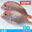 ★超值特價★【台北魚市】  赤宗  600g~650g
