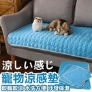 [S號] 寵物涼感平鋪墊 寵物睡墊 寵物...