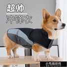 狗狗衣服寵物泰迪柯基法斗柴犬小型大型犬比熊秋冬裝博美加厚衛衣 【全館免運】