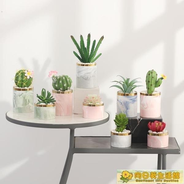 仿真植物 北歐ins多肉小盆栽仙人掌綠植擺件客廳桌面假花盆景擺設 向日葵