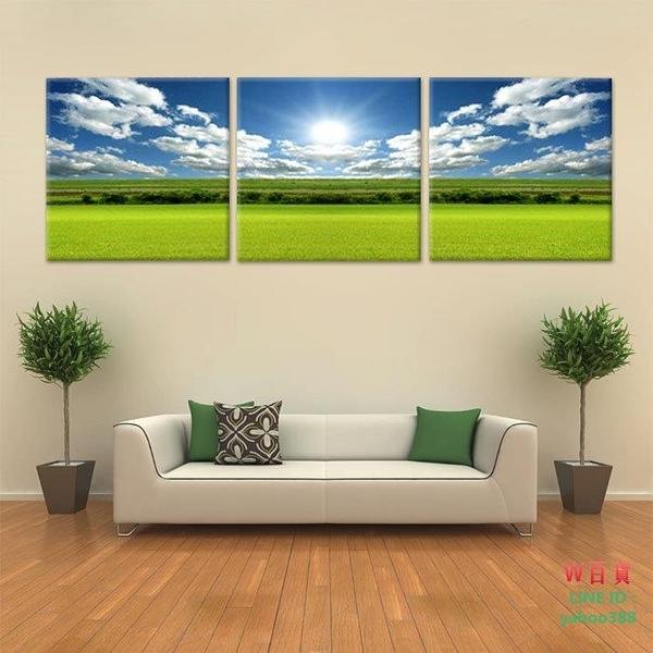 現代裝飾畫 風景 三聯畫 客廳板畫 其他壁畫 無框畫 平原 11(W149)