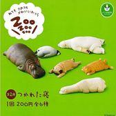 【小福部屋】日本 扭蛋星球 熊貓之穴 河馬 狗 貓咪 北極熊 企鵝 扭蛋6入 第2彈 公仔【新品上架】