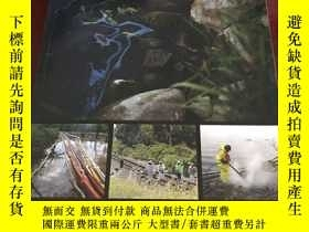 二手書博民逛書店Spills罕見of diluted bitumen from