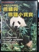 挖寶二手片-Z32-034-正版VCD-其他【熊貓與熊貓小寶寶】-(直購價)