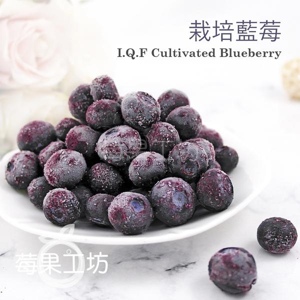 冷凍莓果任選 6公斤特惠價