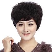 假髮(短髮)真髮絲-熟齡自然蓬鬆逼真女假髮2色73ek24【時尚巴黎】