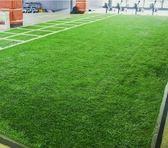 文明人造草坪健身房地毯墊子高爾夫球場專用仿真草地加密假草皮  【帝一3C旗艦】