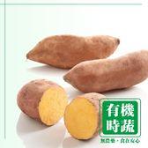 【有機認證生鮮時蔬】紅肉地瓜 ( 550~600g ∕ 包)